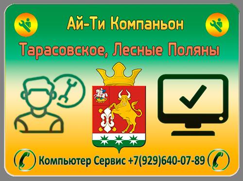 Ремонт компьютеров Лесные Поляны