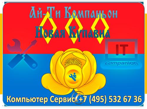 Ремонт компьютеров Новая Купавна