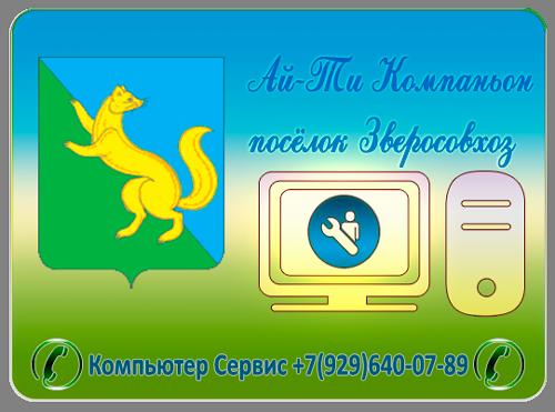 Ремонт компьютерной техники, пос. Зверосовхоза