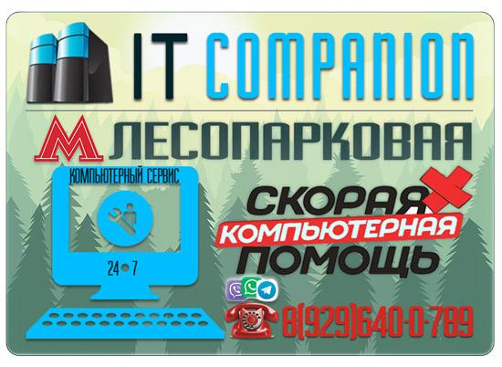 Ремонт компьютеров на дому / офисе в районе метро Лесопарковая